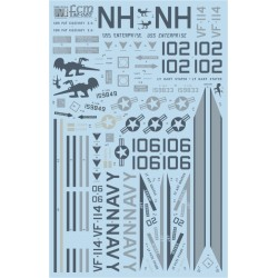 DECAL F-14A VF-114 AARDVARKS